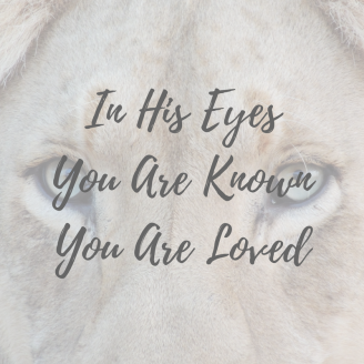 in-his-eyesyou-are-knownyou-are-loved